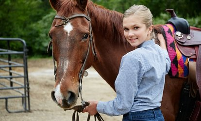 image for Up to Four 40-Minute Private Horse Riding Lessons at The Freedom Centre (58% Off)