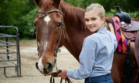 Introductory Horse Riding Lesson with Ice Cream for One or Two at Monach Farm Riding Stables
