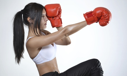 Three or Six Classes or One Month of Unlimited Classes and One Pair of Gloves at CKO Kickboxing (Up to 86% Off)