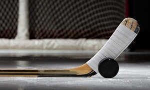 4 The Luv of Hockey: Five, 10, or 20 Days of Hockey Day Camp at 4 The Luv of Hockey (Up to 55% Off)