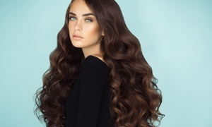 Hair Fashion Acconciature: 3 o 6 pieghe con shampoo e uno o 2 tagli al Hair Fashion Acconciature (sconto fino a 66%)