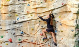 Cliffhanger: Rock Climbing Day Pass with Gear Hire for Two ($25), Four ($45) or Eight People ($80) at Cliffhanger (Up to $216 Value)