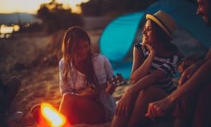 Suonare l'ukulele - Life Learning: Videocorso per imparare a suonare l'ukulele con Life Learning (sconto di 80%)