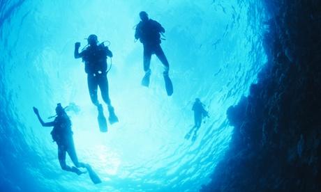 Curso Open Water con 4 inmersiones o bautismo de buceo para 1 o 2 personas desde 34,99 € en Marina Diving