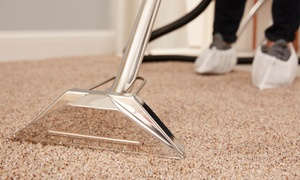 Too Clean LLC: Five, 10 or 15 Metres Carpet Cleaning by Too Clean