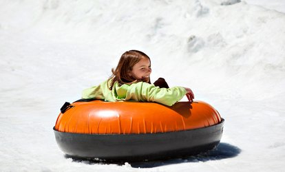 image for Sno-Tubing and Two Toboggan Rides with Optional Pizza for Two or Four at Swadlincote Ski Centre (Up to 63% Off)