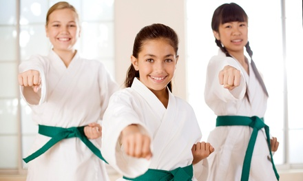 $35 Off $70 Worth of Martial Arts / Karate / MMA - Kids