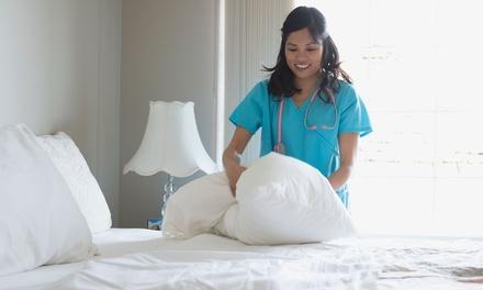 Adult Nursing Essentials Online Course Training
