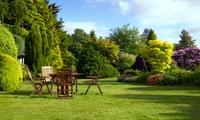 Professionelle Gartenpflege für bis zu 2 oder 4 Stunden inklusive Anfahrt von blank SERVICE (50% sparen*)