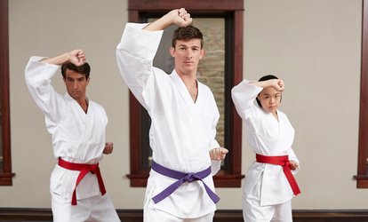 55% Off <strong>Martial Arts</strong> / Karate / MMA