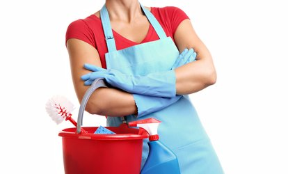 Five Hours of House Cleaning or Commercial Cleaning from Pristine Clean