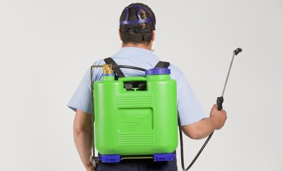 Up to 72% Off Pest Control Treatment from Legacy Exterminators