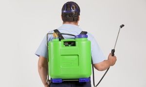 Gam Exterminating: $50 for $125 Toward Pest-Control Services from GAM Exterminating