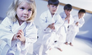 Any Bodies and Advanced Hair & Beauty: 10 Martial Arts Classes for One ($29) or Two Children ($55) at Any Bodies and Advanced Hair & Beauty (Up to $318 Value)