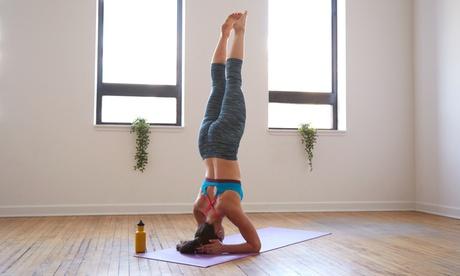 Bis zu 10x Yoga für Beginner im Yogastudio