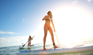 Bike & Kayak Tours: One Stand Up Paddle Boarding Rental for One or Two from Bike & Kayak Tours (50% Off)