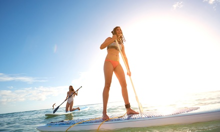 Stand Up Paddle Boarding Rental for One or Two at Bike and Kayak Tours (Up to 55% Off)