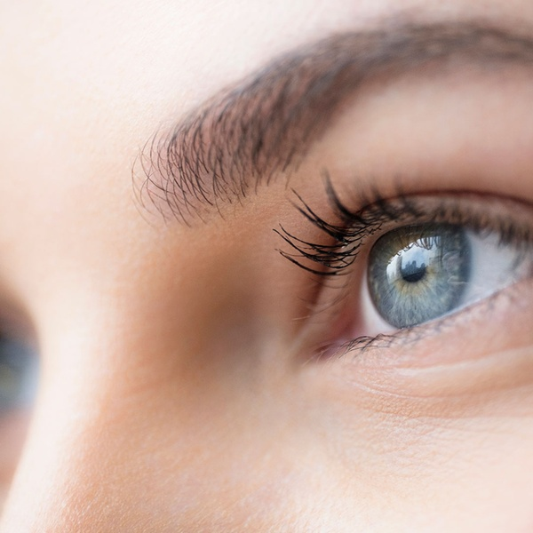 b42a1cd2078 The Neighborhood Spa & Lash Studio - From $6 - Pittsford, NY | Groupon