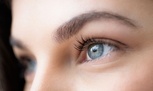 Up to 32% Off Services at Cluster Lash Extensions at Miracle Eyebrows , plus 6.0% Cash Back from Ebates.