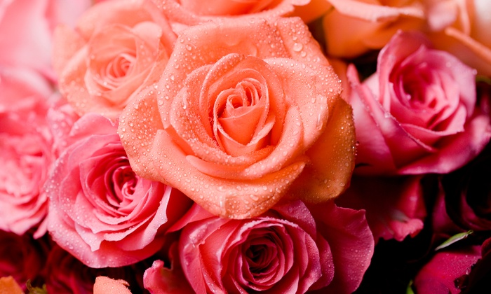 Flowers By Steen - Homer Glen: Dozen Mixed Colored Roses or $20 Worth of Flowers at Flowers By Steen (Up to 53% Off)