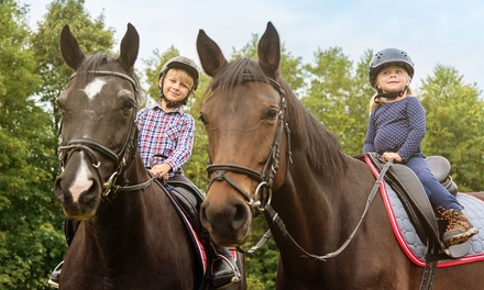 30-minute Group or Private Horse Riding Lesson for One Adult or Child at Redwood Riding School (50% Off)