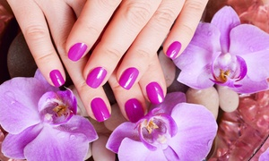 Laura Rodriguez at Tangles Salon: One or Two Groupons, Each Good for a Shellac Manicure from Laura Rodriguez at Tangles Salon (Up to 39% Off)
