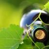 Wertgutschein für Wein