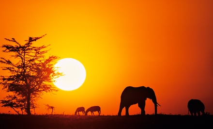 Groupon Deal: ✈ 10-Day Tour of Kenya with Air from Great Value Vacations; Price/Person Based on Double Occupancy