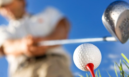 One or Two Private Golf Lessons and Driving-Range Practice Sessions at Eagle Ridge Golf Club (Up to 53% Off)