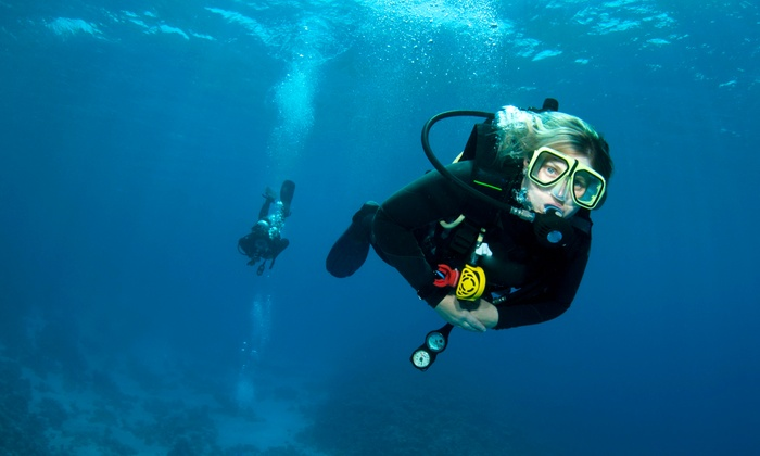 Dive N Surf - Redondo Beach: $229 for a Scuba-Certification Course with Rental Gear and Four Ocean Dives from Dive N Surf ($459.99 Value)