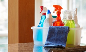 Squeaky Clean: Two or Three Hours of Housecleaning from Squeaky Clean (53% Off)