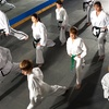 Up to 52% Off Tae Kwon Do Classes
