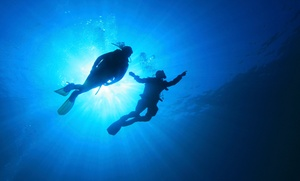 DiveAqua: Discover Scuba Class, Open Water Course, or Scuba Certification at Dive Aqua (Up to 53%Off). Five Options.