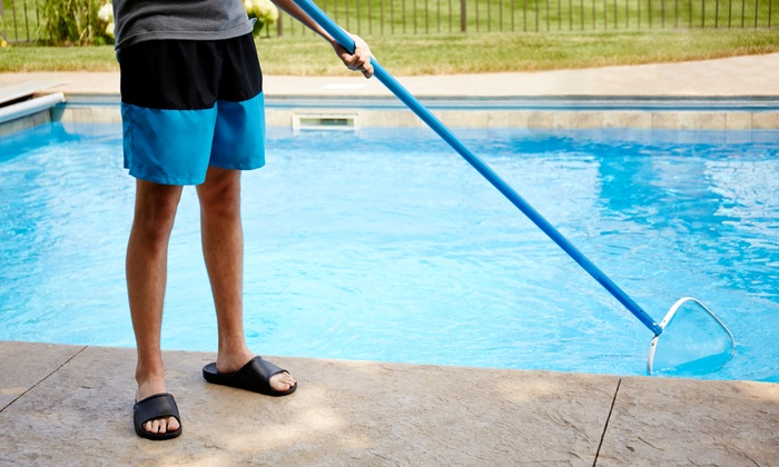 Aqua Shark Pool Care - Tampa Bay Area: One-Time Pool Cleaning or One Month of Weekly Pool Cleanings from Aqua Shark Pool Care (Up to 51% Off)