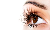 Full Set of Eyelash Extensions with Optional Eyebrow Shape and Tint at Stylistics (Up to 58% Off)