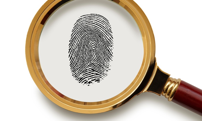 Premier Protection & Investigations - Knoxville: $56 for $125 Groupon — Premier Protection & Investigations
