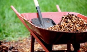 Pine Ridge MN LLC: $199 for 3 Cubic Yards of Shredded Mulch from Pine Ridge Landscaping & Tree Services ($400 Value)