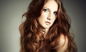 The Apprentice Salon: $25 for a Haircut, Deep-Conditioning Treatment, and Style at The Apprentice Salon ($50 Value)