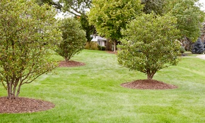 Weed Man - Rowan/Cabarus/Union County: Weed-Control and Crabgrass Treatment with Option for Fertilizer from Weed Man (Up to 82% Off)