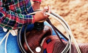Centre équestre des deux rives: 3 séances d'essai de poney à 19,90 € au Centre équestre des Deux Rives