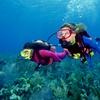 Corso di sub Scuba Diver PADI