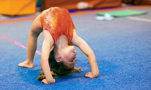 Stingray Cheer Company: Five Gymnastics Classes for Kids Aged 18 Months–2 Years or 4–5 Years at Stingray Cheer Company (Up to 49% Off).