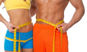 Lipo-Light Utah: One, Three, or Four Lipo Light Sessions with Body Vibration and Exam at Lipo Light Utah (Up to 85% Off)