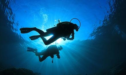 Tauchkurs–Open Water Diver Starterpaket mit Theorie und Pooltauchen beim SSI Dive Center für 89,90 € (58% sparen*)