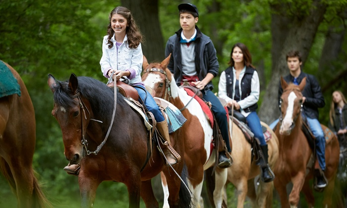 Spring Valley Farm - Blue Ridge: One-Hour Horseback Trail Ride for One, Two, or Four at Spring Valley Farm (Up to 60% Off)