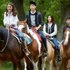 Up to 43% Off Horseback-Riding Sessions