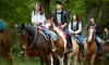 Up to 44% Off Horseback-Riding Sessions
