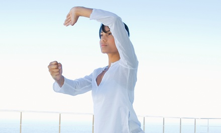 12 Tai Chi Classes or One Month of Unlimited Classes at Tai Chi Association of Colorado Springs (Up to 67% Off)