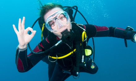 Introductory Scuba-Diving Session or Basic Open Water Certification Class at Cincinnati Diving Center (Half Off)