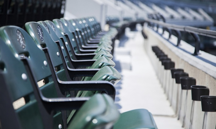 East Coast Swing Baseball Tour  - Hilton Boston Logan Airport: East Coast Swing Baseball Tour Package Including Four MLB Games, Hotel Accommodations, and Transportation (May 24–29)